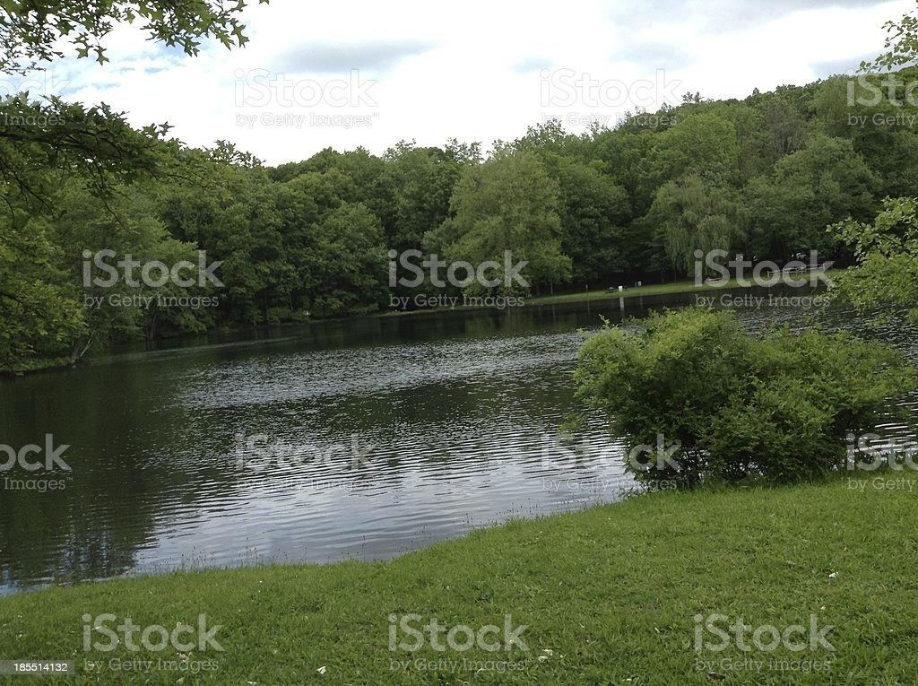 Lago Rodeado de árvores foto de stock royalty-free
