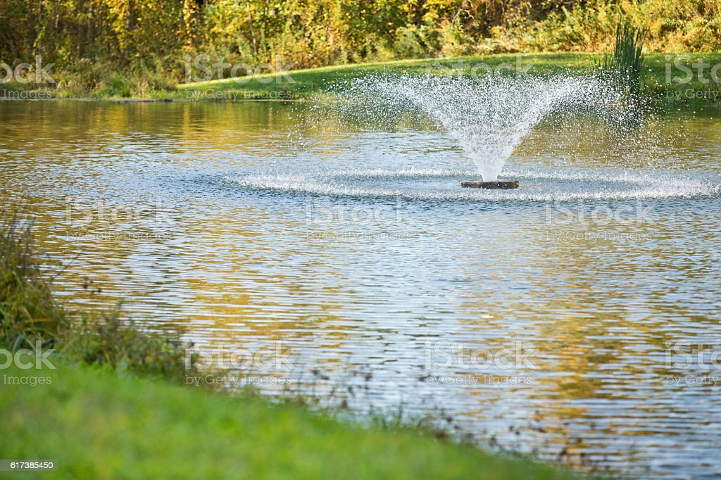 Pond With Fountain stock photo