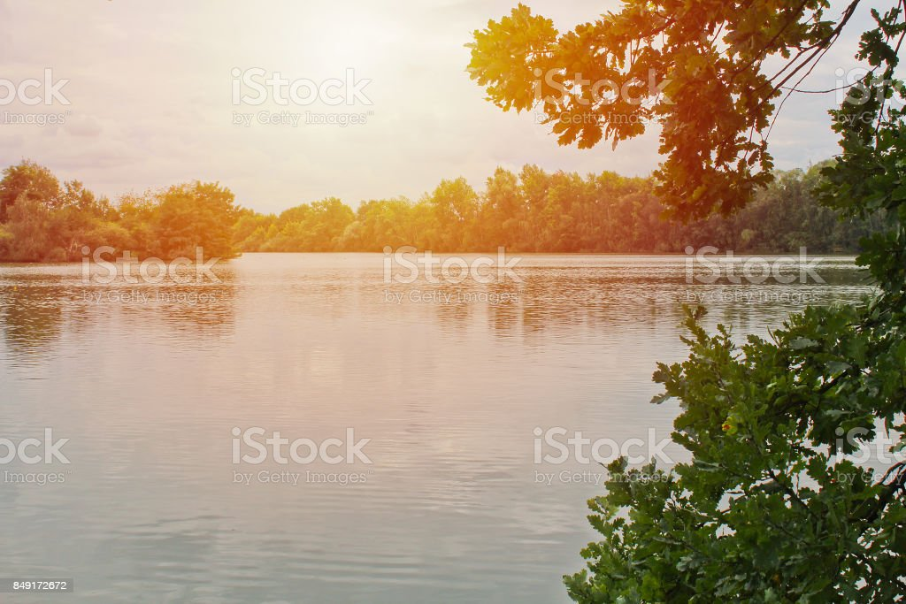 Pond with trees and strong light, Czech landscape stock photo