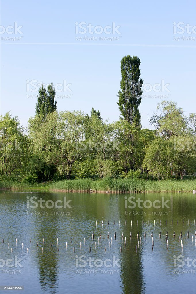ponds, sangam park stock photo