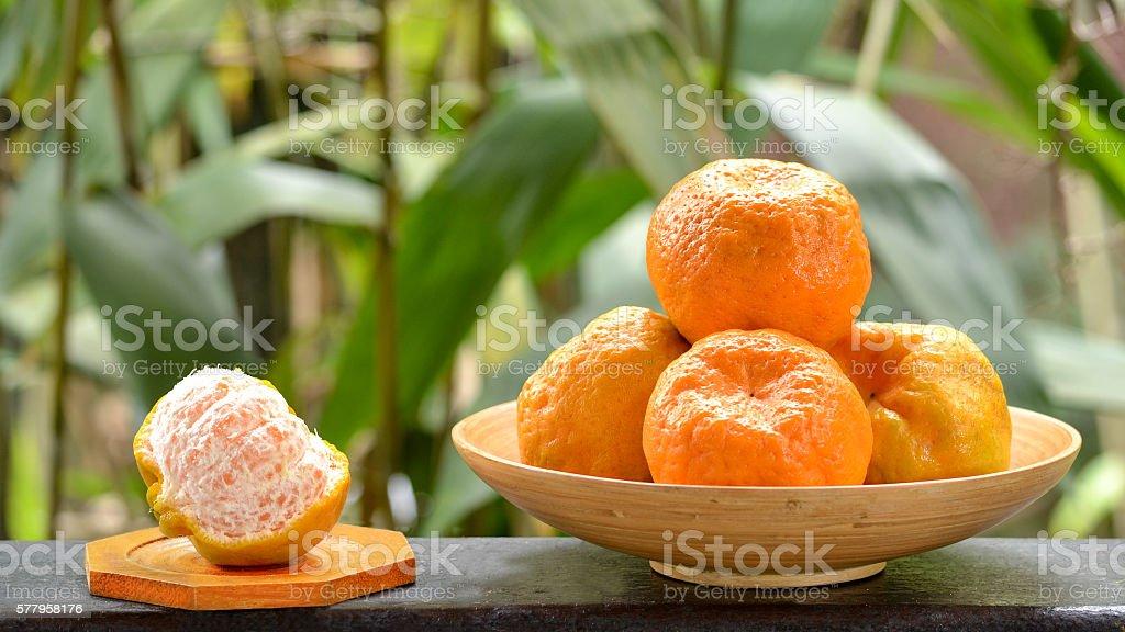 Ponkan Mandarins stock photo