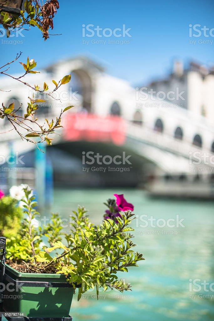Ponte of rialto on Venice stock photo
