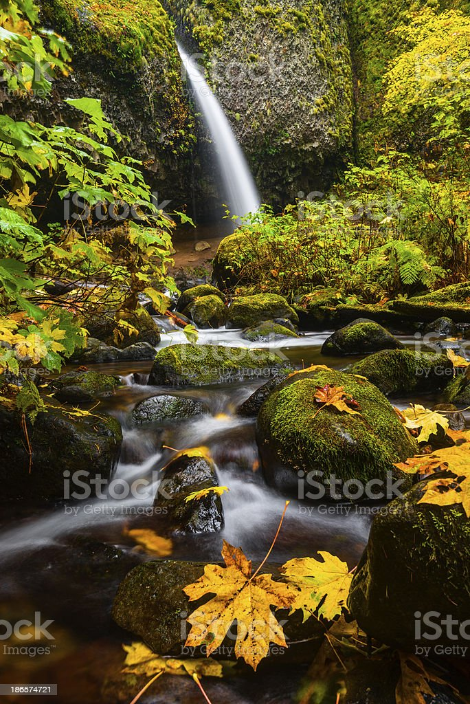 Pony tail falls in Columbia River Gorge during autumn royalty-free stock photo