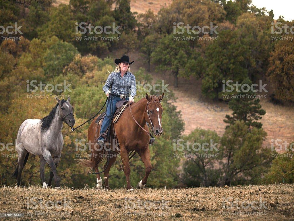 Pony up royalty-free stock photo