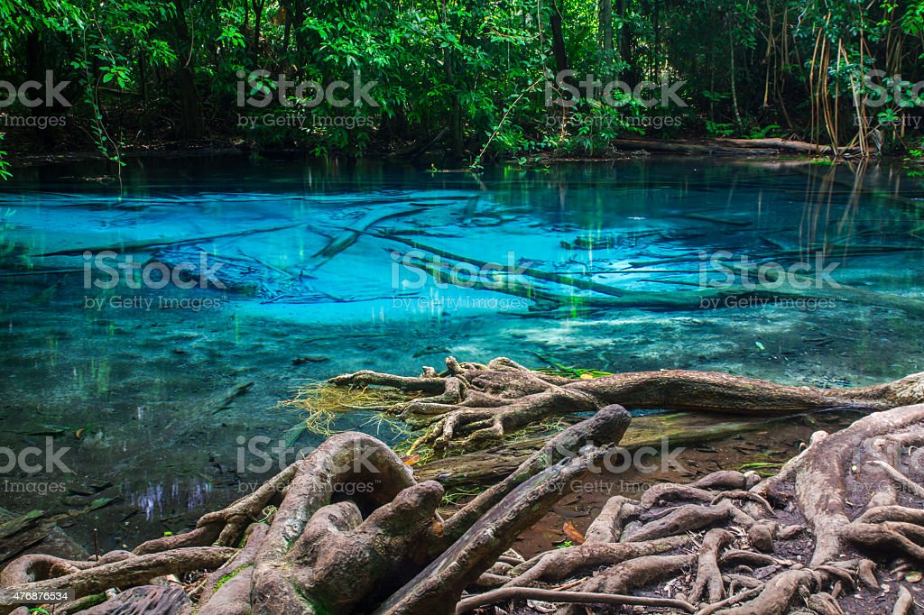 pool at Krabi Province in Thailand. stock photo