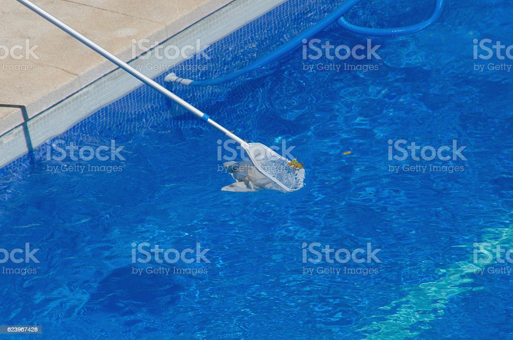 Pool cleaning with a net stock photo