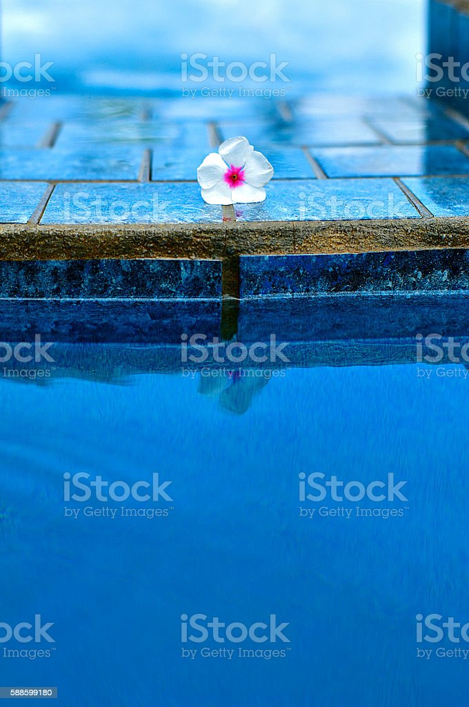 Pool Side stock photo