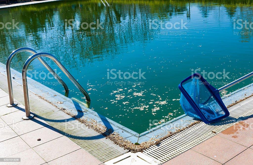 Pool skimmer stock photo