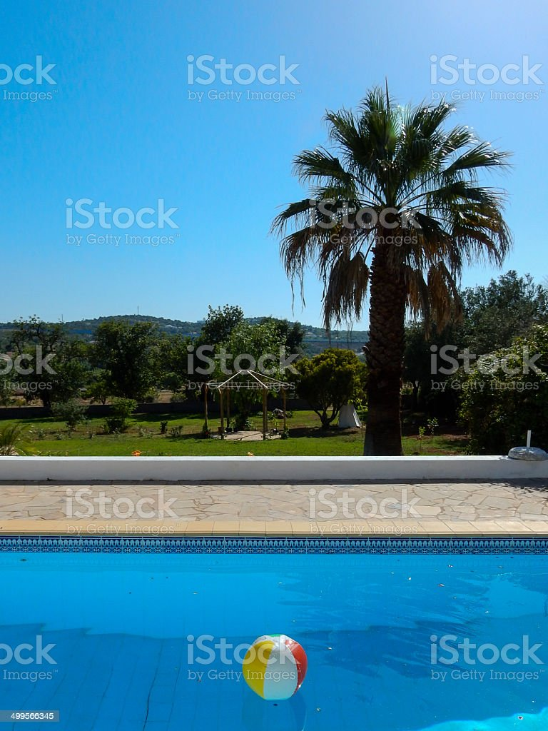 Pool with beach ball and palm tree royalty-free stock photo