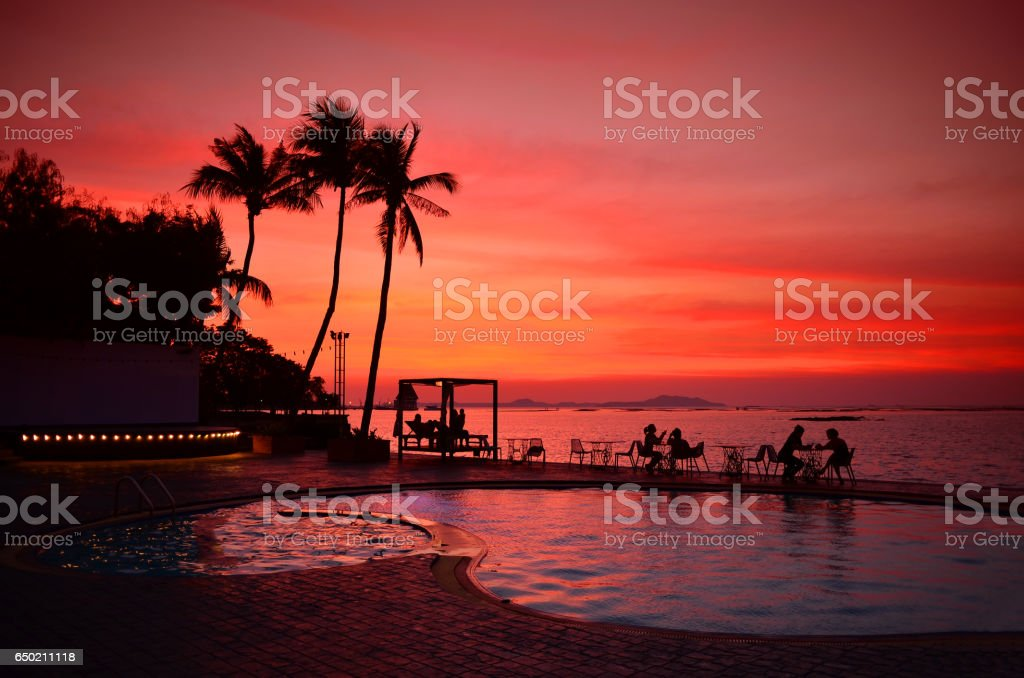Pool with palm trees near the ocean during stock photo