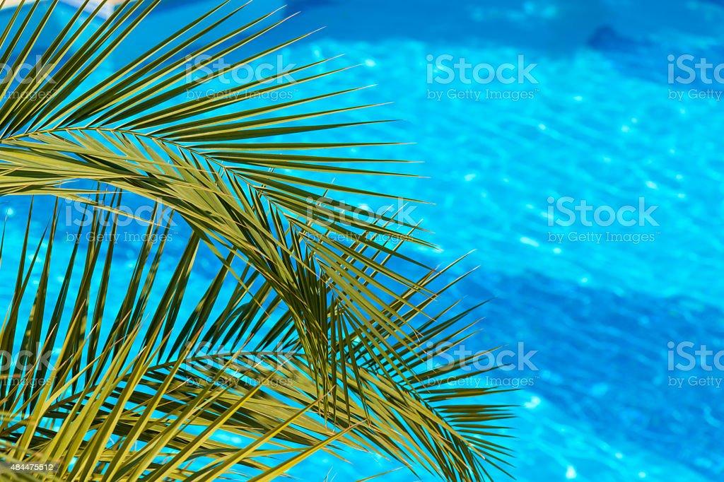 Poolside on tropical beach stock photo