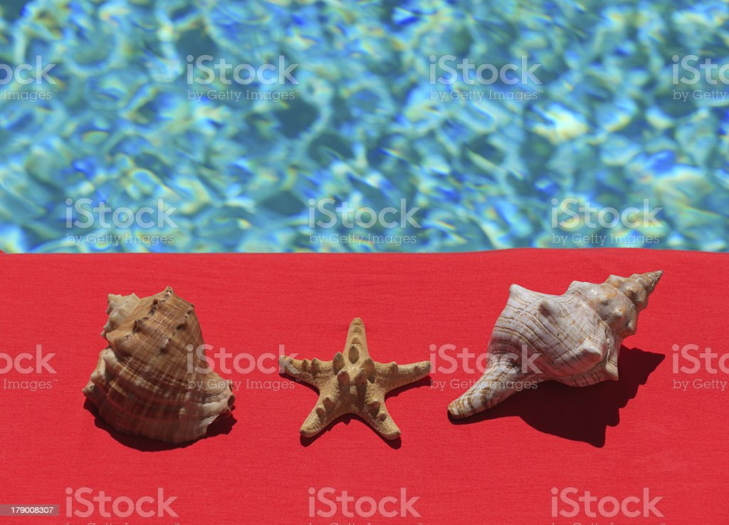 Poolside Summer Vacation Concept royalty-free stock photo