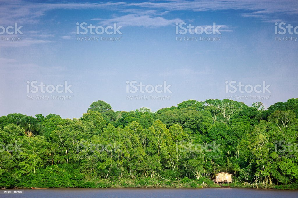 Poor house in the Amazon forest stock photo
