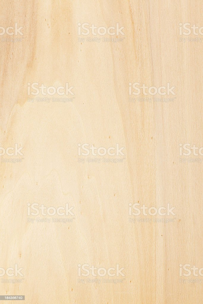 poplar texture royalty-free stock photo