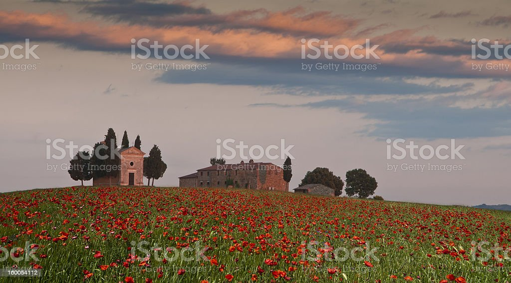 Poppies in Tuscany, Italy, with Chapel and Villa, Val d'Orcia stock photo