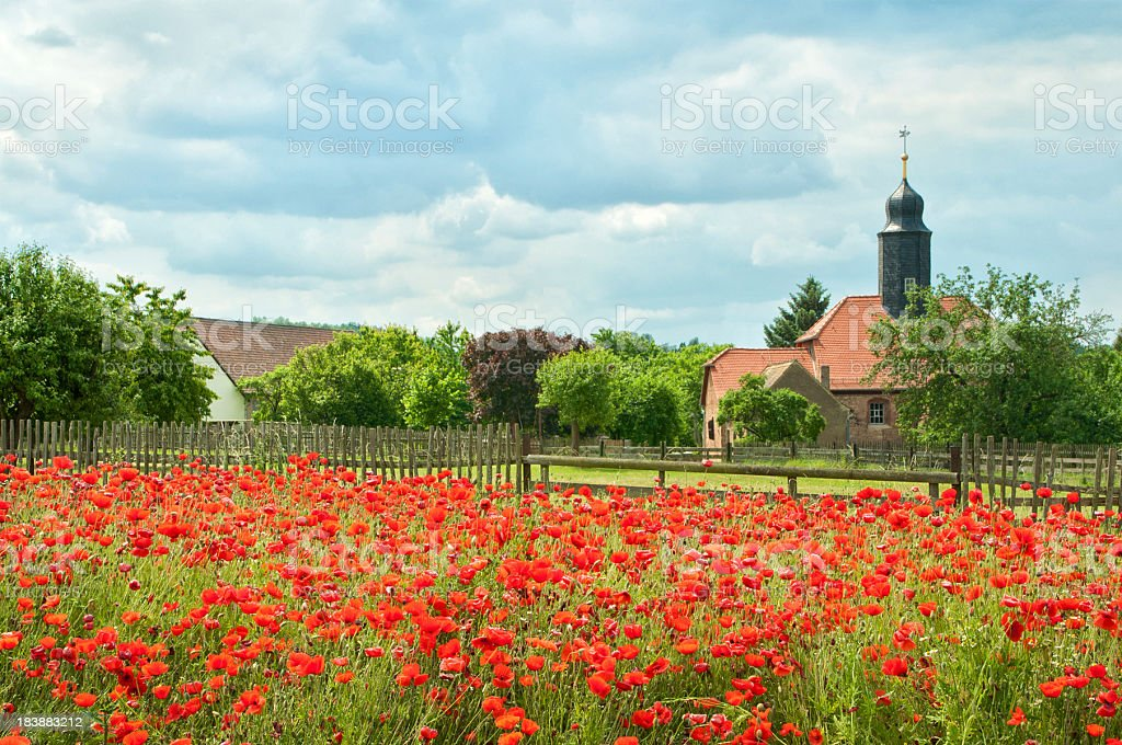 Poppy field and small village church royalty-free stock photo
