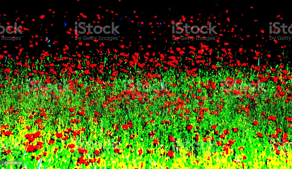 Poppy flowers. Strict processing method mix stock photo