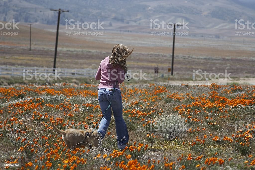 poppy girl with her dog royalty-free stock photo