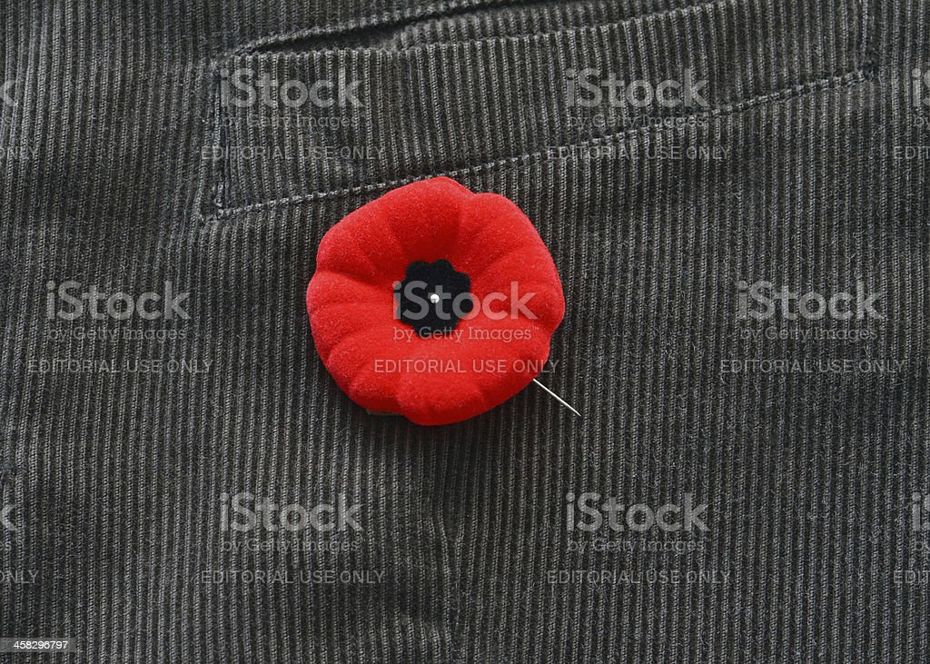 Poppy on Jacket stock photo