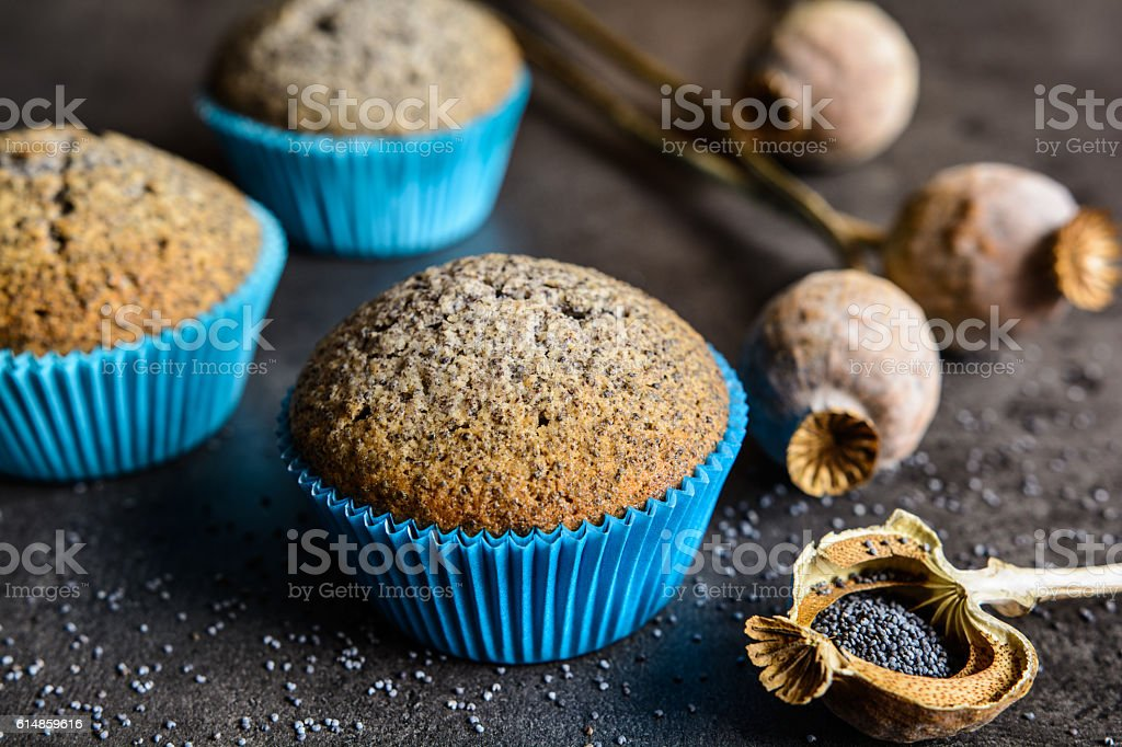 Poppy seeds muffins stock photo