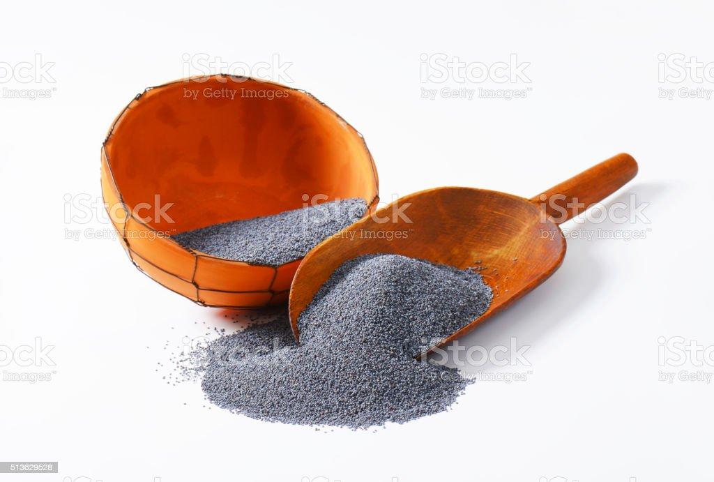 Poppy seeds stock photo