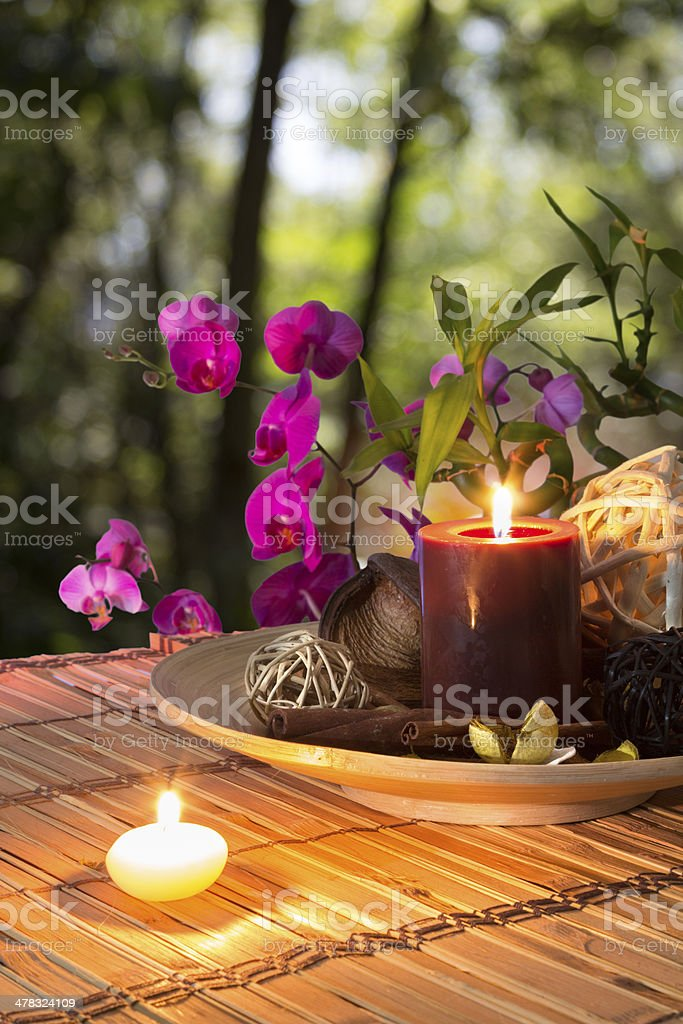 Popurr?, bowl, candles , cinnamon, and orchid - in forest royalty-free stock photo