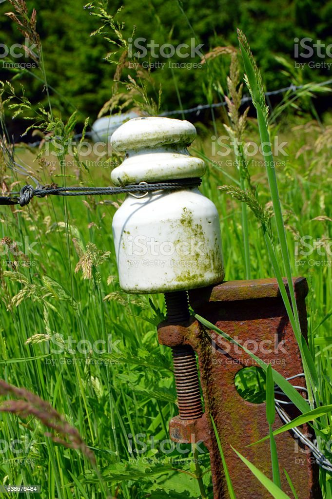 Porcelain insulator on a metal picket. stock photo