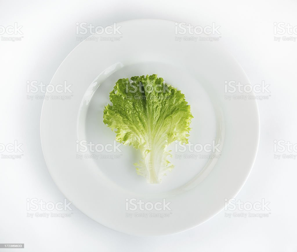 Porcelain plate and fresh green lettuce royalty-free stock photo