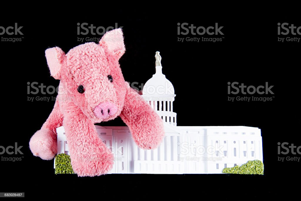 Pork Spending at US Capitol stock photo