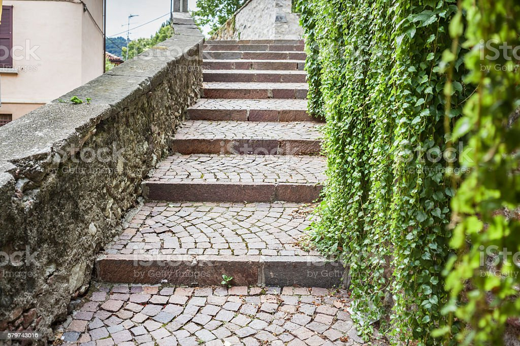 Porphyry Outside Staircase With Ivy Wall stock photo