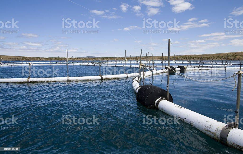 Port Lincoln Aquaculture stock photo
