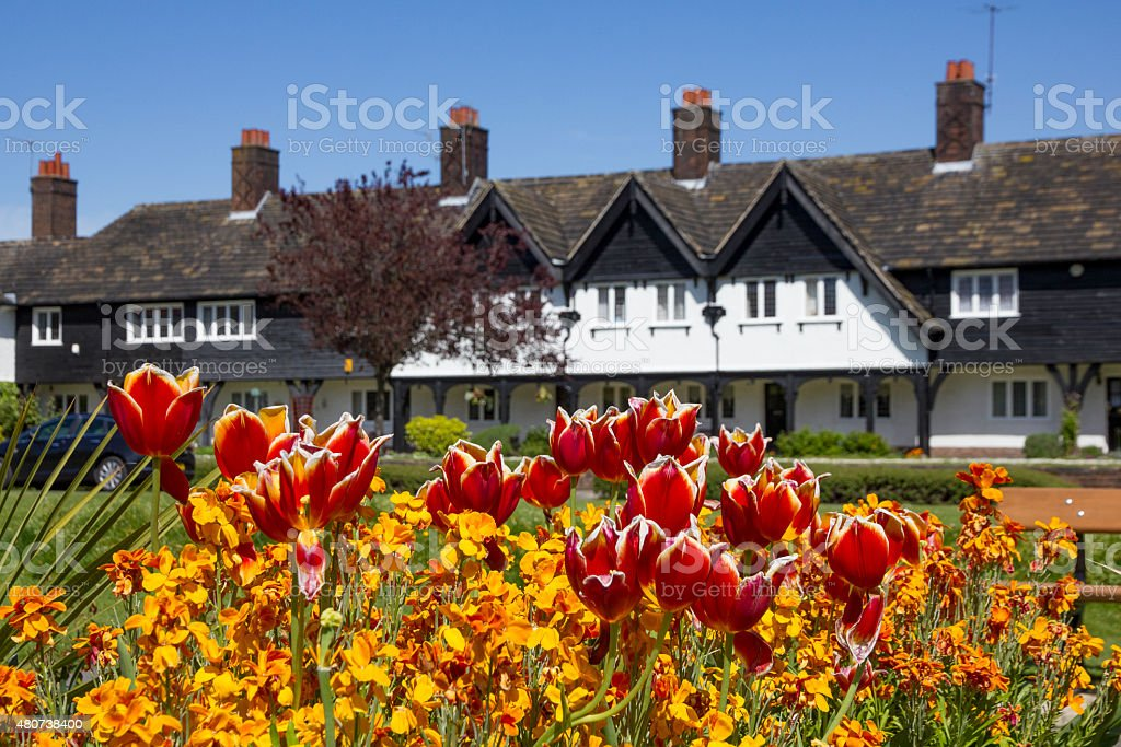 Port Sunlight Houses With Colourful Tulips stock photo
