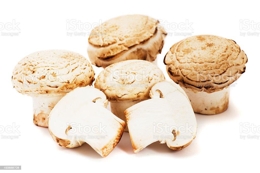 Portabello mushrooms stock photo