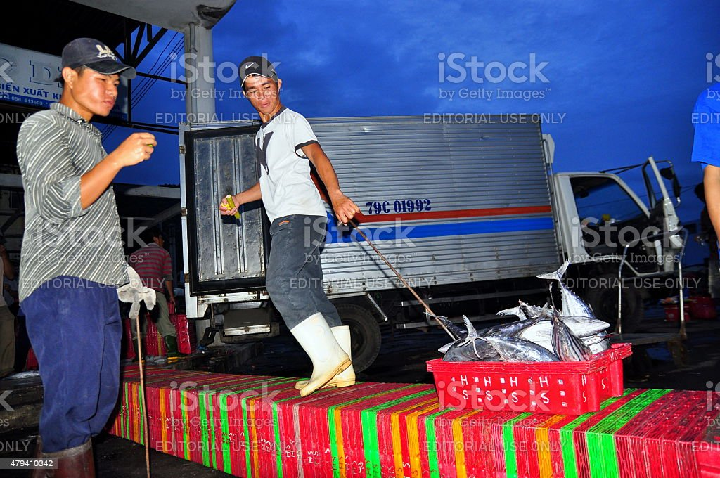 Porters at the seaport are loading baskets of fishes stock photo