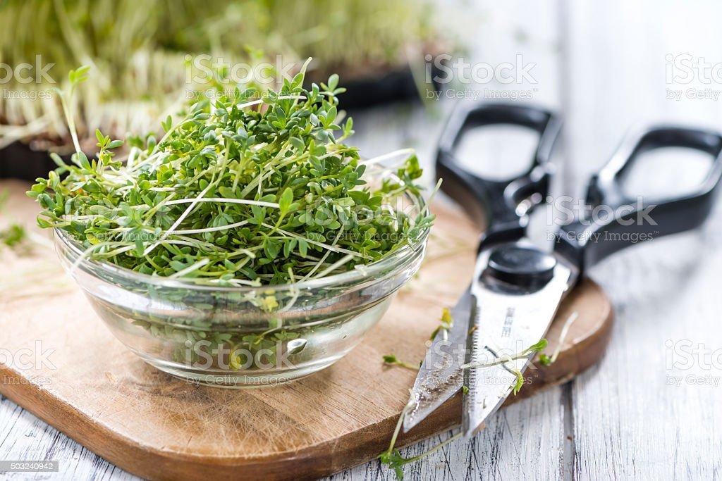 Portion of fresh Garden Cress stock photo