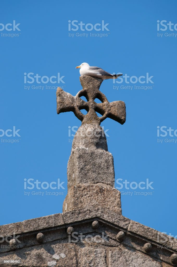 Porto: a seagull perched on the cross at the top of Sé do Porto, the Cathedral of the Old City, one of the city's oldest monuments and one of the most important Romanesque monuments in Portugal stock photo
