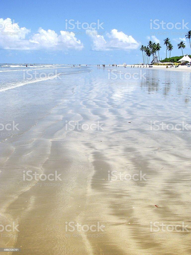 Porto de Galinhas, Brazil: gorgeous dreamy tropical beach. stock photo