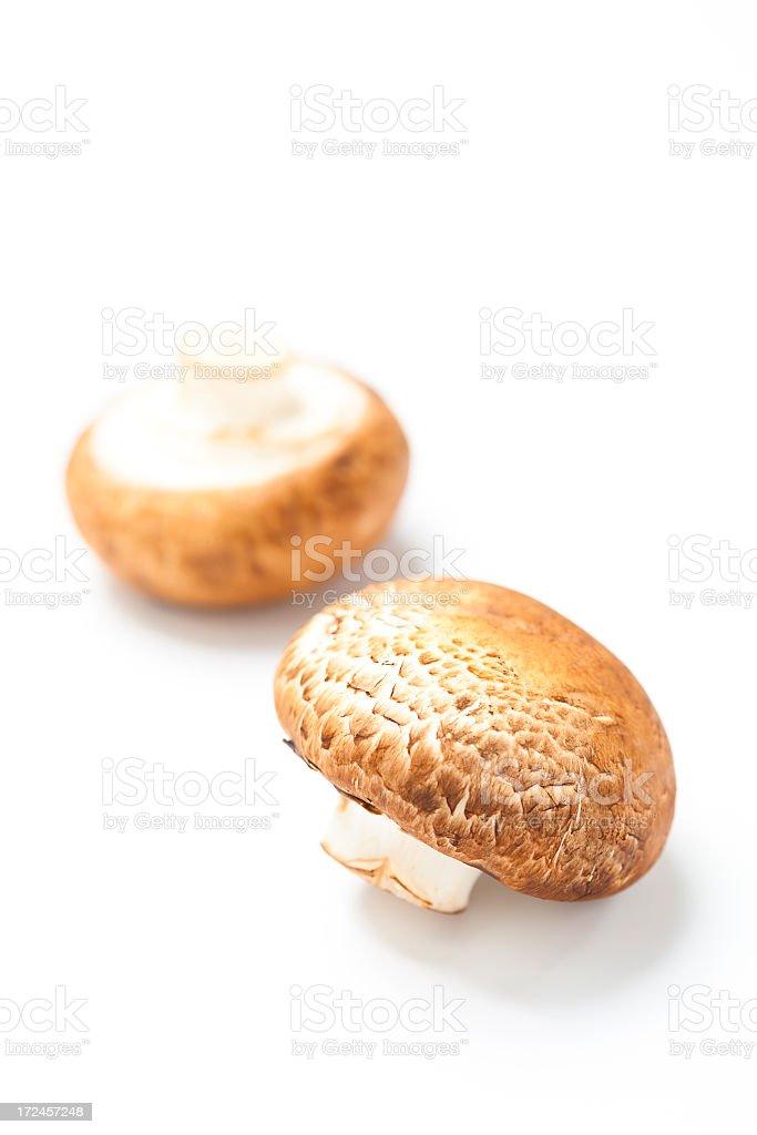 portobello mushrooms stock photo