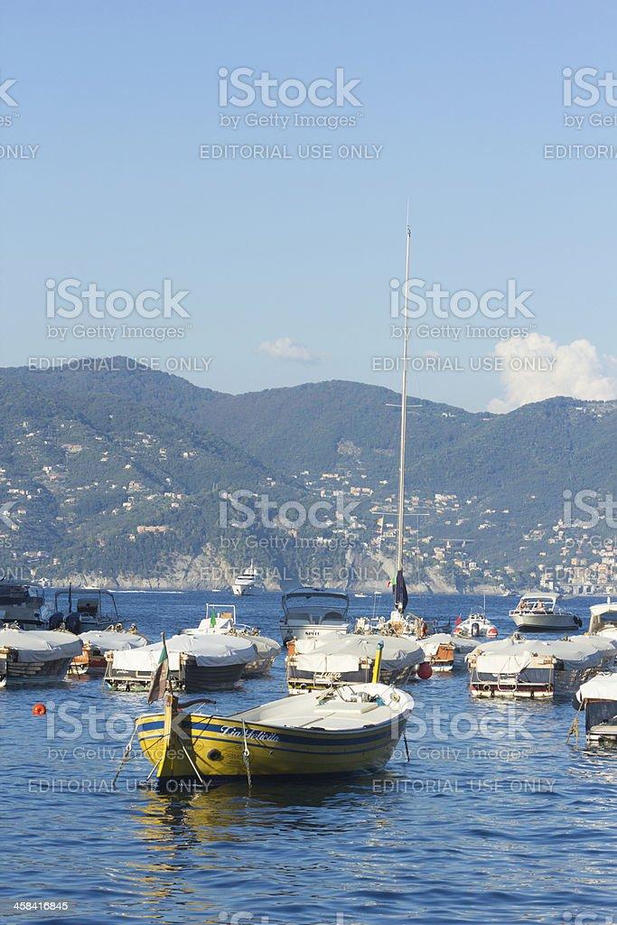 Portofino Peninsula in Liguria, Italy royalty-free stock photo