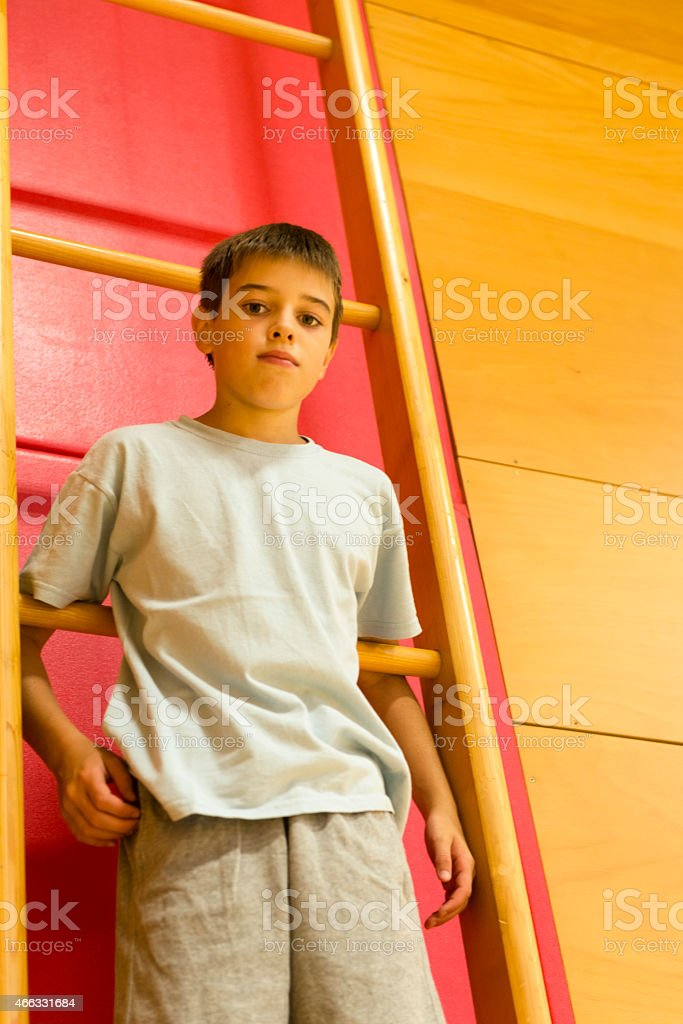 Portrait, Boy of Eleven Climbing Gymnastics Ladder,  School Gymnasium, Europe stock photo
