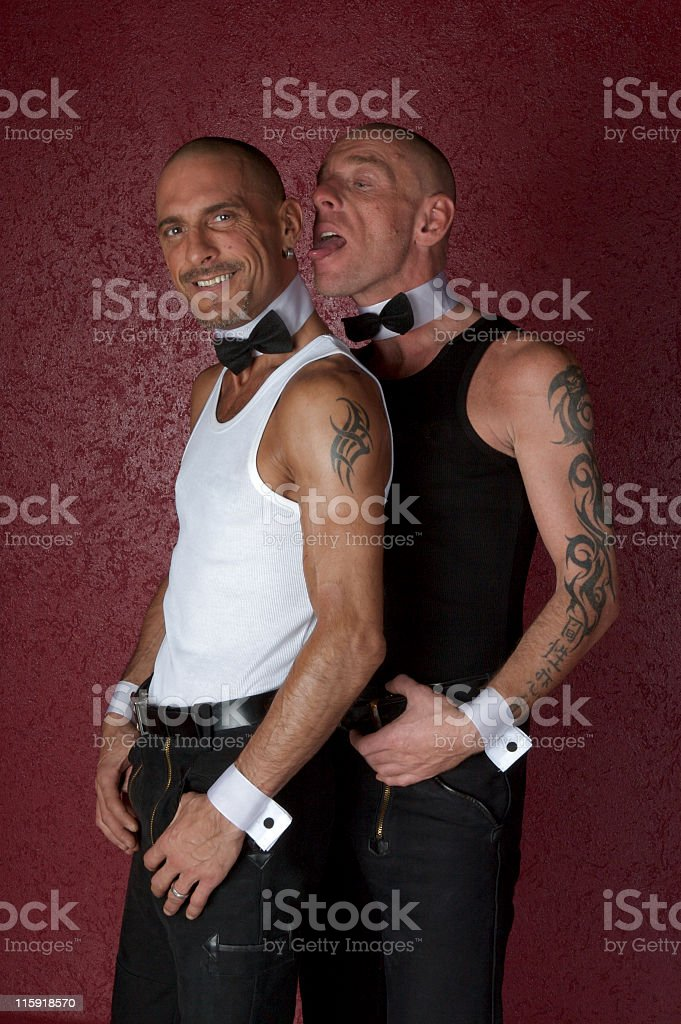 portrait: funny mid adult gay couple with bald heads royalty-free stock photo