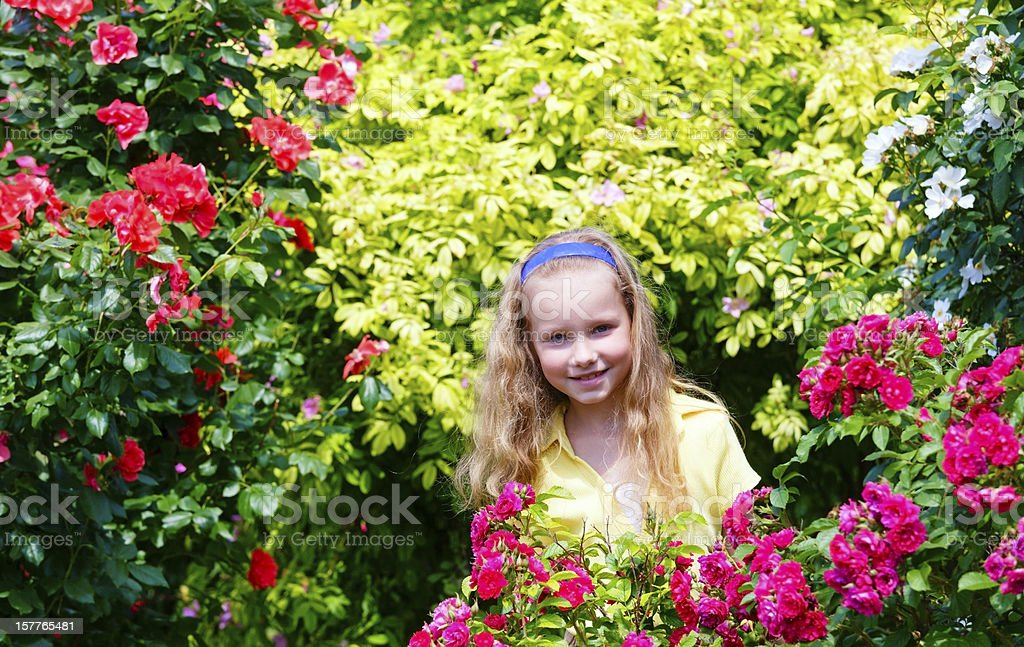 Portrait girl and rose bushes royalty-free stock photo