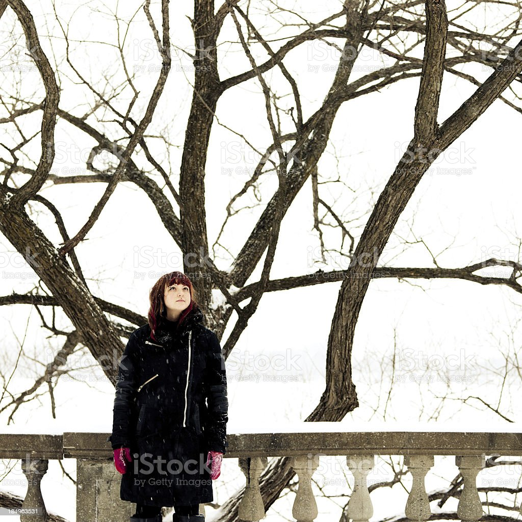 Portrait In A Snowfall royalty-free stock photo