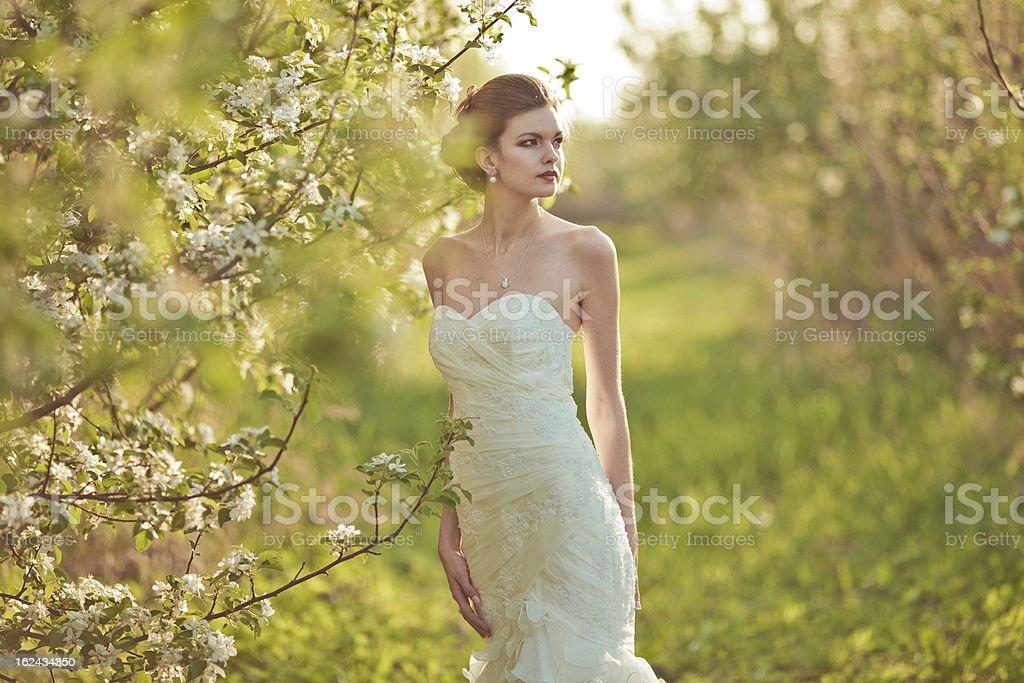 Portrait of a beautiful brunette bride stock photo