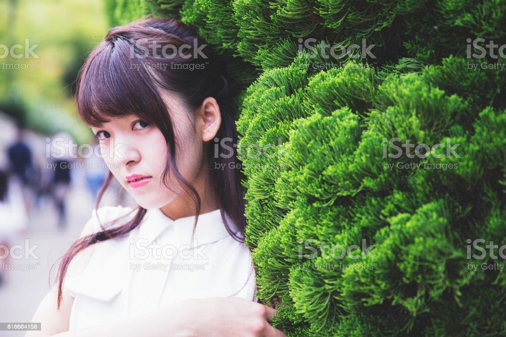 Portrait of a Beautiful Japanese Girl stock photo