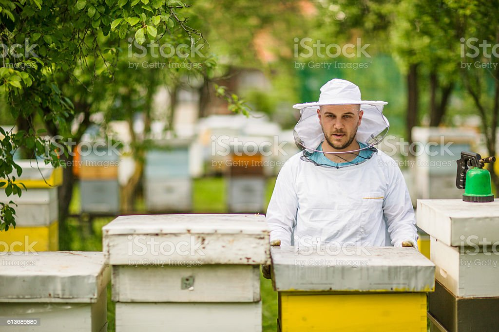 Portrait of a beekeeper on apiary at hive stock photo