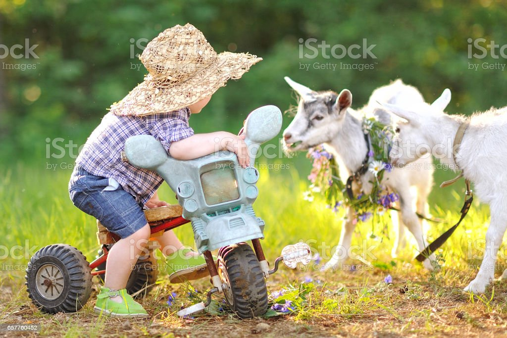 Portrait of a boy in the summer outdoors stock photo