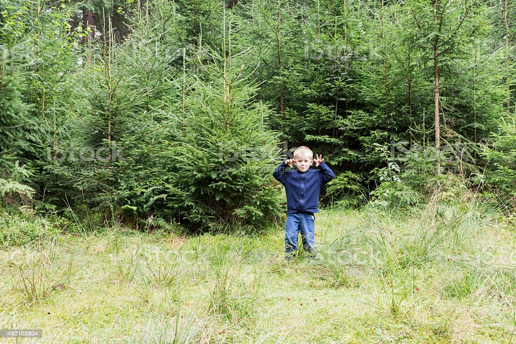 Portrait of a boy in the woods stock photo