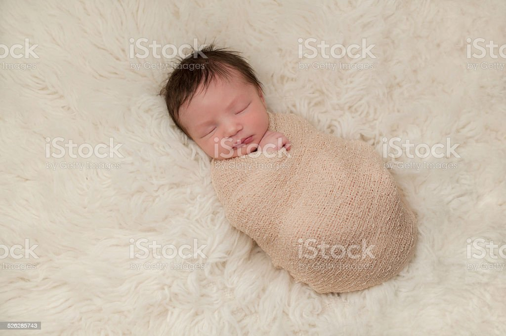 Portrait of a Bundled Up Newborn Baby Boy stock photo