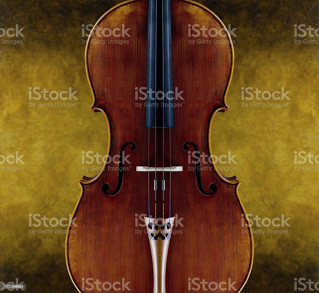 portrait of a cello royalty-free stock photo